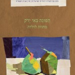 meshiv aruch zelda