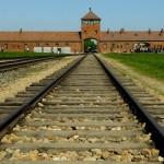 Auschwitz.Concentration.Camp.original.18601